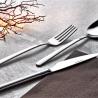 شحن انواع راقية من اطقم الملاعق و السكاكين التركية باسعار منافسة للدول العربية